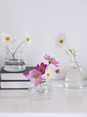 お花の長さや量が変わることで、似合う花瓶も変わります。ひとつのブーケを最後まで飾り切って、アレンジ力を高めていきましょう♪