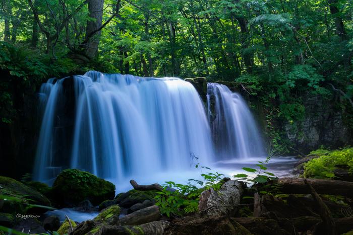 奥入瀬の本流にかかる唯一の滝「銚子大滝(ちょうしおおたき)」。高さは7mですが幅は20mあり、水量が豊富で見事な滝です。四季折々の自然の美しさを映しだします。