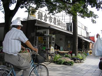 外を歩けば、観光客も、地元の人もふらっと集まって、自然にお喋りが弾んだり、情報交換しあったり。そんな良さがあるのも、鎌倉ならでは。 今回はそのような鎌倉で、暮らすように滞在できる「ゲストハウス」をご紹介します。