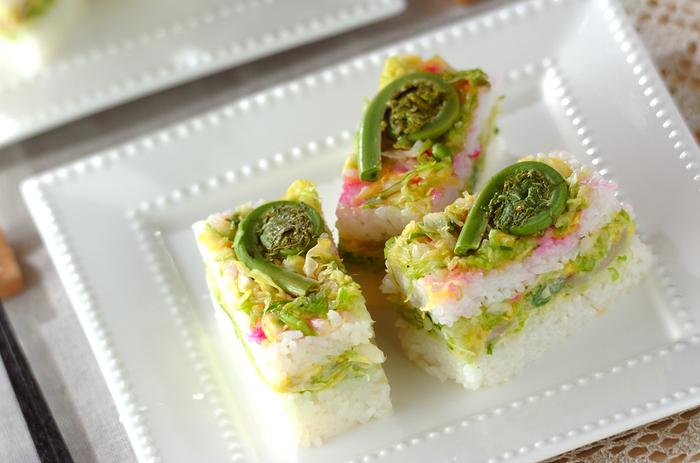 より春らしい見た目の押し寿司はいかがでしょうか?千切りの春キャベツを挟んでいるので、食感も楽しい一品ですよ。