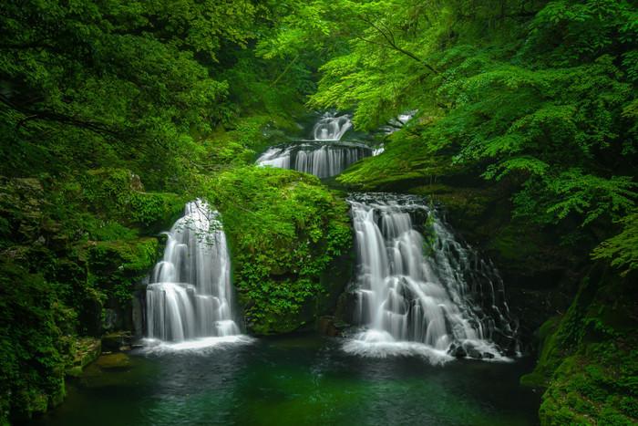 三重県にある奥深い渓谷「赤目四十八滝(あかめしじゅうはちたき)」。大小さまざまな滝に沿って約4Kmの遊歩道が続きます。赤目五瀑の1つ、高さ8mの滝が岩の両側を流れ落ちる荷担滝(にないだき)は、渓谷で最も美しいとされる景観です。