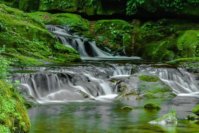 赤目四十八滝では、23瀑もの滝を往復3時間程度で楽しむことができます。 小さくやさしい流れの滝で苔の美しさを堪能するのもいいですね。