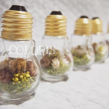 電球テラリウム、素敵ですね♪使い終わった電球に、木の実やドライフラワーを入れると、アートなインテリアに生まれ変わります。