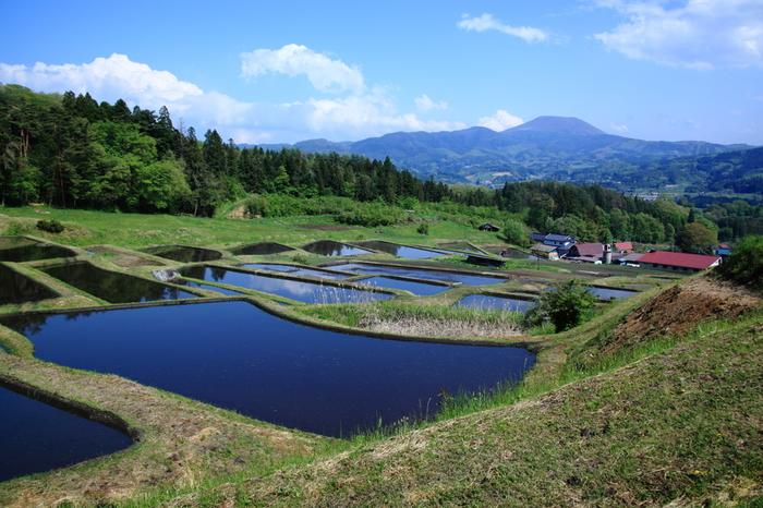 岩手県大東町にある山吹棚田は、日本の棚田百選の中でも最北端に位置する棚田です。