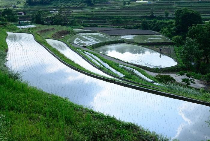 今や失われつつある日本の原風景ともいえる、農村部の里山風景と棚田が織りなす景色はどこを切り取っても絵になり、思わずカメラに収めたくなるほどの美しさです。