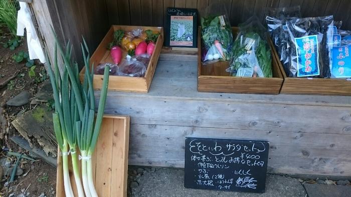 お店の外ではお野菜の販売も。自家栽培しているお野菜や、近所の農家さんが育てたお野菜を購入することができます。カラフルな大根や新鮮なかぶなど、どれもおいしそう。旅のお土産にもおすすめです。