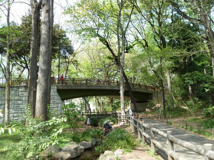 かつて湿地帯だったことから、園内には、上池と下池、それらを結ぶ小さな水路が走っています。画像は「せせらぎ橋」。