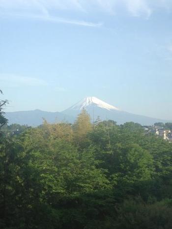 静岡・伊豆長岡にある「伊豆畑毛温泉 大仙家」では、庭園にある大仙窯で陶芸体験ができます。富士山を見上げながらオリジナルの箸置きや湯のみ、小皿など作ってみたら、良い思い出になりますよ。
