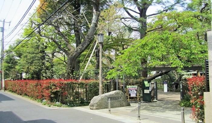 ボタニカル女子なら、1956年の初版以来、ロングセラーとなっている植物学者・牧野富太郎の著書「牧野日本植物図鑑」を一度は目にしたことがあるのでは?日本の植物学の父といわれる牧野氏が晩年に暮らした家の跡に、約300種類の草木がある庭園と再現された書斎、展示棟からなる施設です。(画像:筆者)