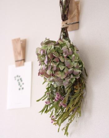 心和むナチュラルなスワッグや観葉植物も、「ウォールデコ」として楽しめます。ちょっと色褪せたシャビーなスワッグは、無垢材の壁掛けピンチに吊るしてみましょう。植物をモチーフにしたポストカードや、エアプランツとのコーディネートも素敵です。