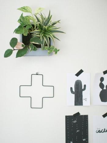無印良品の「壁に掛けられる観葉植物」は、癒し効果ばつぐんの「ウォールデコ」です。オーナメントやポストカードとのコーディネートを楽しんでみて。植物の生長に伴って見た目が変わるおもしろさもあります。