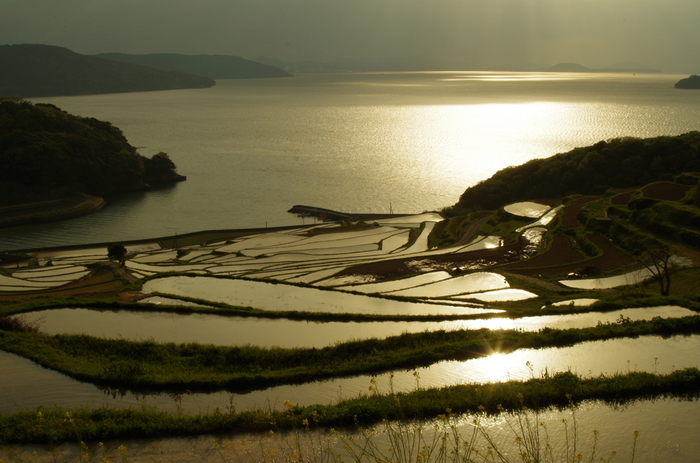 日本の棚田百選とは、1999年7月26日に農林水産省が選定した全国177市町村・134地区の棚田のことです。