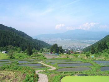 福島新田は、全景を見渡すこともできます。時間に余裕があれば、棚田の上の方から福島新田の全景を眺めてみることをおすすめします。