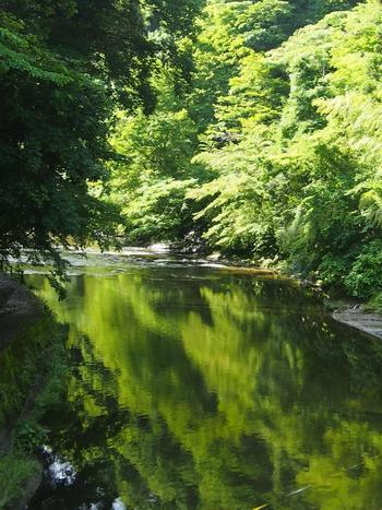 駅名にもなっている「養老渓谷」は、木々の緑が川へのうつり込む美しい風景。川のせせらぎと小鳥のさえずりが心地よく響いています。