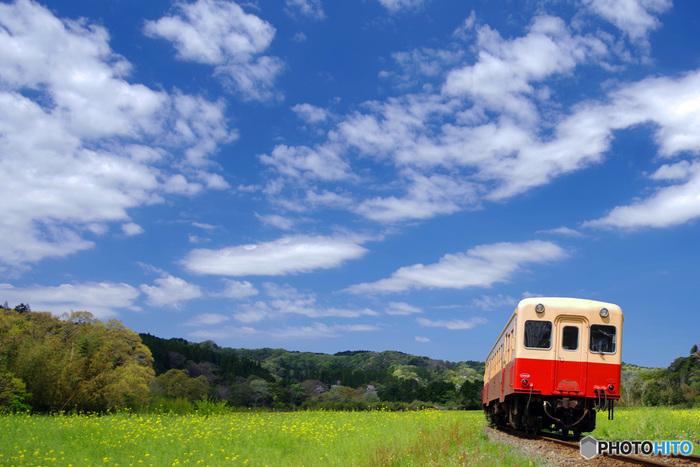 青い空と緑の景色を眺めてリフレッシュしたい時にピッタリな、小湊鉄道をご案内しましょう♪