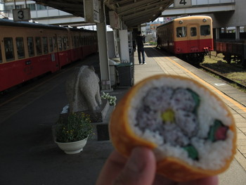 あまり食事ができるところが無いので、小湊鉄道五井駅にある販売所「やり田」で、お弁当を購入しておくと安心です。画像の「房総太巻」や「あさりめし」「房総ちらし」などリーズナブルで美味しいお弁当が揃っています。