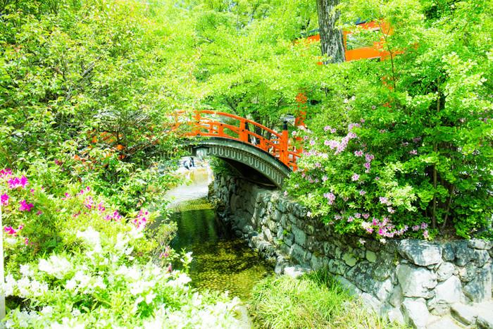 糺の森の中には、下鴨神社へと至る表参道と並行に、「瀬見の小川」「泉川」の2つの小川が流れています。この川は神社の手前で合流して「御手洗川(みたらしがわ)」という流れに。下鴨神社の境内では、この川が流れ込む池に足をひたして無病息災を願う「みたらし祭(足つけ神事)」が土用の丑の日に行われます。
