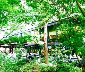 樹木や植物など、緑豊かな森に囲まれたカジュアルフレンチのカフェ「ザ・カフェ byアマン」でいただける、絶品スイーツをご紹介します。