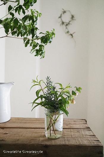 植物がすくすくと育つ梅雨期は、香り豊かなハーブもおいしくなる時期です。生けて楽しんだり料理に使って、爽やかな風味を堪能するのも良いですね。 ガラス製のフラワーベースや食器と合わせれば季節感のあるコーディネートに。