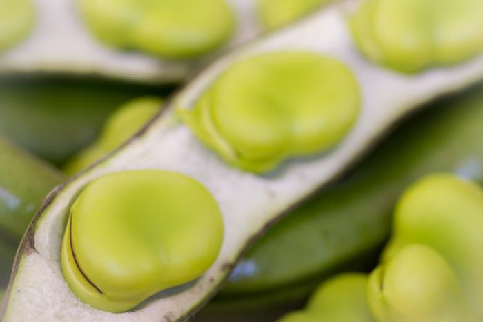 ほっこりした食感で、豆のうま味がぎゅーっと詰まったそら豆。シンプルにそら豆のおいしさを活かしたキッシュがおすすめです。
