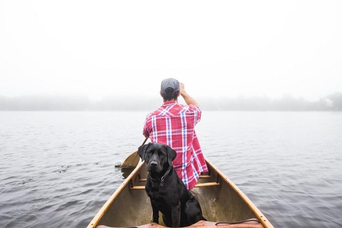 犬はどんなときでも、飼い主のそばにいてくれます。たとえ、家族や友人がついて行きたがらない場所でも、付き添ってくれます。