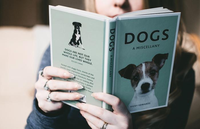 犬を家族に迎えるためには、犬との接し方や注意点を理解しておくことが大切です。犬を飼うということはどういうことなのか、どんなことに注意する必要があるのか、犬のトリセツ(取扱説明書)として、いくつかご紹介します。