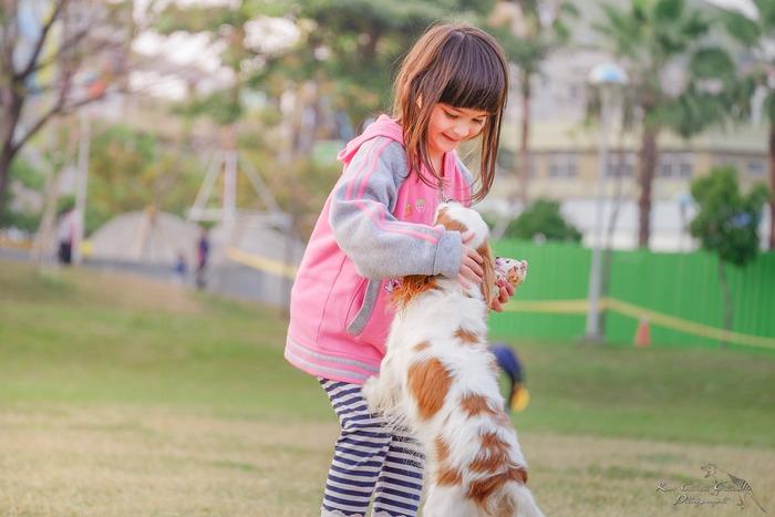 子供の情操教育にもよいと言われています。ごはんをあげたり、犬のトイレを片付けたり、お散歩に行ったり。一緒に暮らすことで、「誰かのために何かをしてあげたい」という、優しい気持ちを芽生えさせてくれるでしょう。