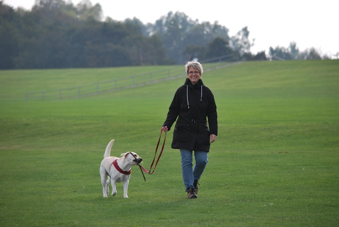 毎日のお散歩で飼い主も運動不足が解消!近年の研究では、犬を飼っていない人よりも犬と暮らす人の方が、血圧が低いことが分かったり、犬と良好な関係を築く飼い主は体内で「幸せホルモン」と呼ばれるオキシトシンが多く分泌されると、いわれています。