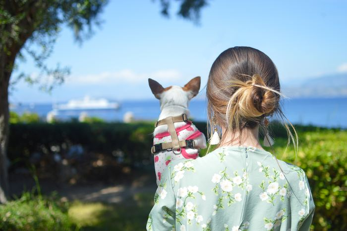いかがでしたか?「犬」を家族に迎えることで大変なこともあるけれど、それ以上にステキなことがたくさんあります。犬を家族に迎えるかどうか悩んでいるのなら、犬を飼っている人に具体的に聞いてみると良いかもしれません。もしも、家族として迎えると決めたときは、一生涯愛し続けて、「犬」が家族にいる生活を楽しく過ごしてくださいね。