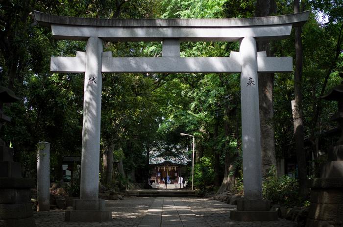 """渋谷の代々木八幡宮・参道で開催されている「奥渋谷 杜のてづくり市」。緑に囲まれた静かな境内に、小物や食品を販売する50のブースが並びます。""""まったり・ゆったり・楽しめる""""をコンセプトにしているので、落ち着いた空間でゆったりとお買い物をしたい方におすすめです。"""