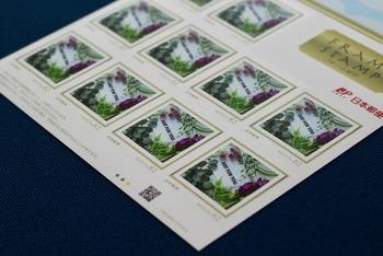 ✦とっておきの写真で切手がつくれるサービス せっかくオシャレなレターセットで手紙を書いたら、切手も可愛いものにしたくなりますよね。そんなときにおすすめなのがお気に入りの写真を使って作るオリジナル切手。シールタイプで貼りやすく、話題作りにもなって一石二鳥です。