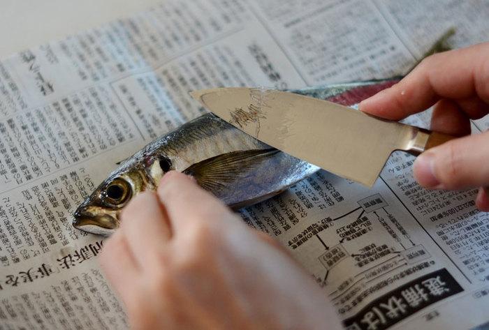 アジを3枚におろす際には、まな板が汚れないように新聞の準備を。そのままゴミが捨てやすくて便利です。以下のリンクにとてもわかりやすく丁寧におろし方が説明されているので、ぜひ参考にしてみてください。
