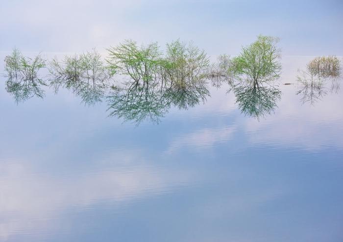 このように木々が映りこんだこの世のものとは思えないような景色も。