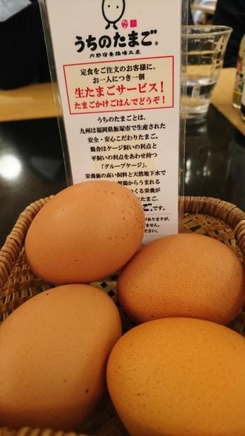 定食を注文した方は、卵かけごはん用の生たまごが1個サービスしてもらえるんです。黄身の濃さは、他の卵とはひと味もふた味も違います。ぜひ食べてみては?