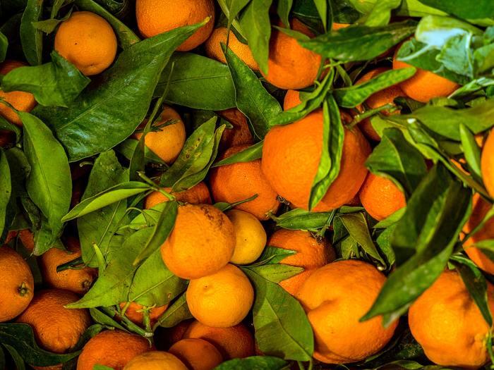 日本の農産物と加工食品においては、定められた規格に準ずると認められた場合に「有機JASマーク」が付けられます。このマークが与えられた食品については、「有機」や「オーガニック」と表示することができるというルールがあります。