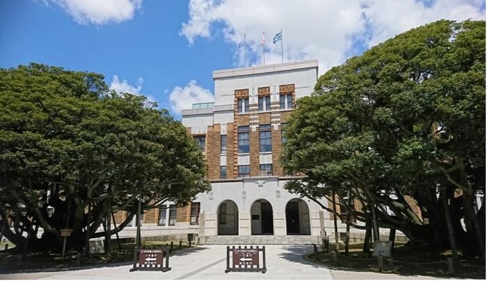 石川県の金沢市「しいのき迎賓館」(旧石川県庁)前にある一対の『堂形のシイノキ』(スダジイ)。どちらも根の周囲が10m前後、高さは10mあまり。国の天然記念物に指定されています。