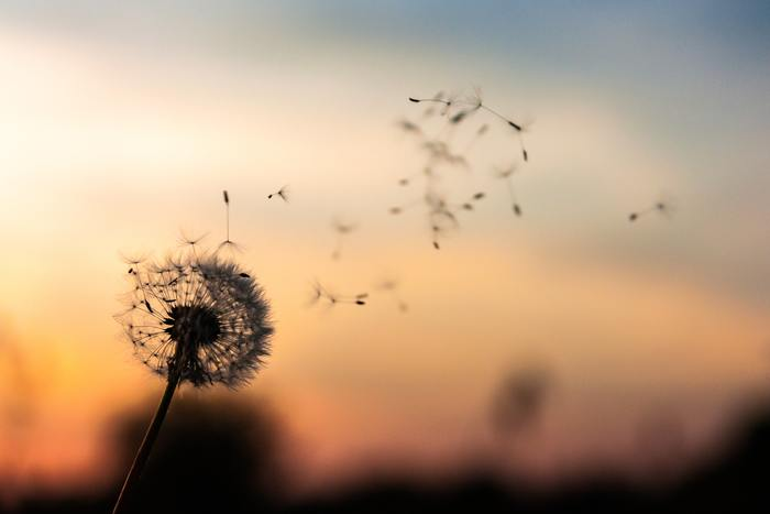 体のための「ため息」ではありますが、周囲の人を不快にしてしまうものでもあります。大切な人間関係が壊れないように「ため息」をつく際には周囲に気を配りたいところです。「ため息」そのものは体にメリットがあっても、人間関係にとってはデメリットにもなり得る…その辺りが「幸せが逃げる」の由来なのかもしれませんね。