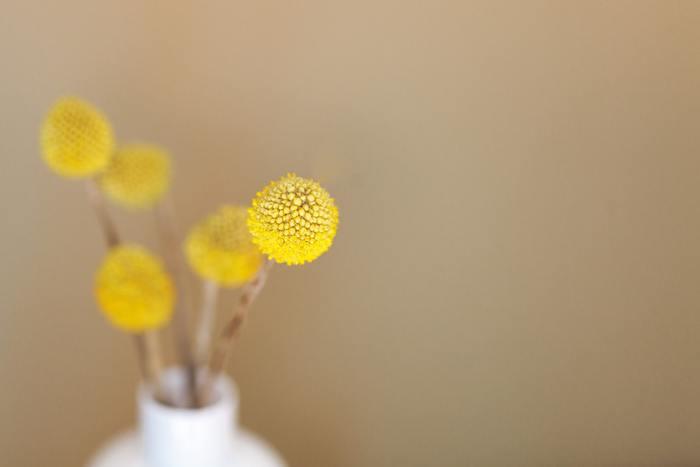 日々の暮らしの中に花があると、心がほっと和む時があります。 お花屋さんで買った花は勿論ですが、庭先に咲いているお花や、野に咲く花も、花瓶に生けてお部屋にそっと置くだけで、なんだか優しい空気が流れます。