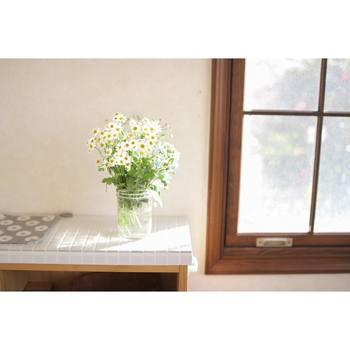 花瓶にさっと生けた花を、ふんわりとかわいらしく撮ってみませんか。ポイントは、自然光が届く窓の近くで撮ること。直射日光は影が強く出てしまうので、晴れた日はレースのカーテンを閉めて光を和らげるとよいでしょう。そうすることで、やわらかい光が被写体全体を包み込むように広がります。花が傾いている方向に余白を設けると、おしゃれな一枚に。