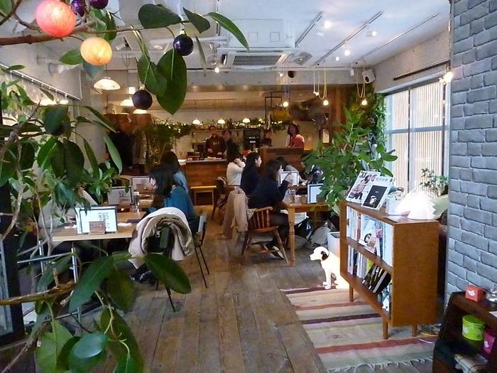 店内は、天然の素材を生かしたオープンで透明感のある空間。家具は北欧のアンティークを中心に、ひとつずつ揃えたそう。グリーンも多く使われていて、ほっこり和みます。