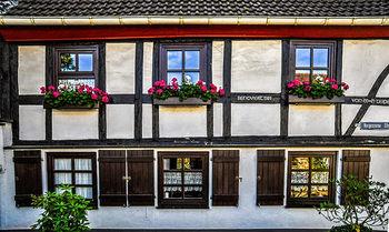 シンプルライフを好み、掃除上手なことも、ドイツ人の特徴。窓はいつもピカピカにして、家の前を通りゆく人々の目を楽しませるため、窓際に花が飾られていることも多いです。  部屋がおしゃれで、すっきりと片付けられた空間なら、ダラダラして過ごすことがもったいなく感じるのでは? 家族との時間や、人を自宅でもてなすことを大切にするドイツ人ならではの心がけであり、家でも質の高い時間を過ごすヒントになりそうです。