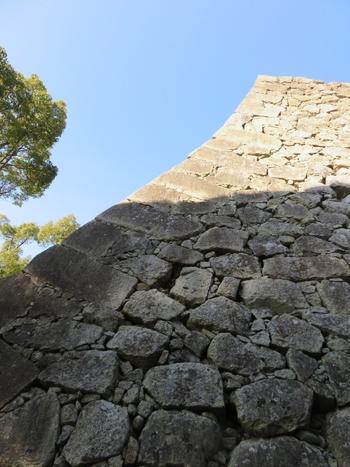 美しい曲線を描いた石垣も見事です。羽柴秀吉(後の豊臣秀吉)が三層の天守閣を築いていた頃、石垣の石集めに苦労していました。そんなとき、城下で焼餅を売っていた老婆が古い石臼を差し出したのです。その話を聞いた秀吉は多いに喜び、その石臼は石垣に使われたと言い伝えられています。