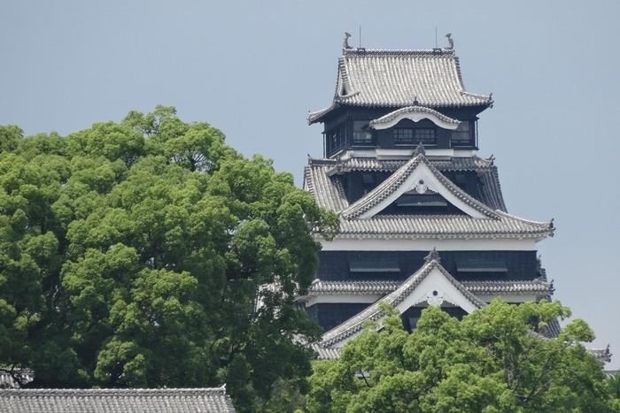 2016年4月14日、熊本地震によって熊本城は大規模な修復工事を必要とする損傷を受けました。これまで、熊本市に住む人はもちろんのこと、観光で訪れる人を見守ってきた熊本城。そして、現在は熊本市の復興のシンボルとして、市民の人たちの心の支えになっています。