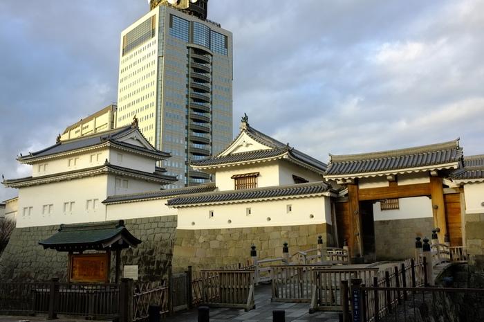 駿府城跡地のそばには、静岡県庁や静岡警察署が建てられており、時を超えて江戸時代と平成のコラボレーションが楽しめます。これまで、取り壊された天守に関する情報がありませんでしたが、2017年に行われた発掘調査により、天守台の大きさは日本一であることが分かりました。また、発掘体験イベントが開催されており、2018年7月~10月にかけて最後の体験イベントが開催される予定です。