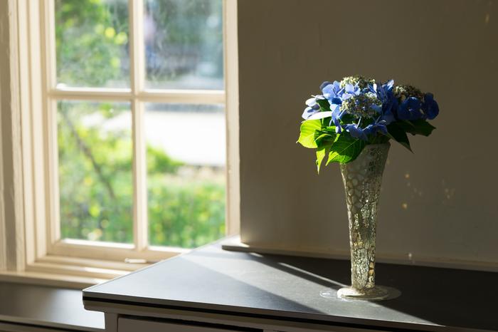 おうちにいても、紫外線は容赦無くガラス越しでもわたしたちのお肌に影響を与えることも。  家にいることが多い方におすすめなのが、「窓用UVカットフィルム」。  窓に貼るだけで、屋内にまで降り注ぐ紫外線の大半をカットできますよ。