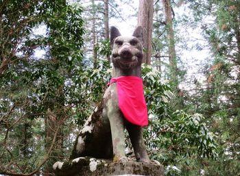 三峯神社のご眷属は狼。三峯神社を創始したと伝えられる日本武尊をこの場所に導いたのが白い狼だったことから、境内のあちこちに祀られています。