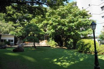 敷地内にカフェや図書スペースがあり、イベントも行われています。都心とは思えないほど多くの緑に囲まれていて、東京にいながらパリを訪れた気分になれますよ。庭園の美しさは一見の価値あり!