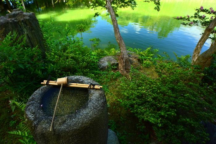 東西700m、南北1300mもの広大な敷地に、京都御所、仙洞御所、大宮御所、京都迎賓館を抱く京都御所。平安京とともにその歴史は始まり、多くの宮家・公家の邸宅が立ち並んだ江戸時代を経て、明治時代以降、公園として一般に開放されました。現在は京都の中心にあって、豊かな自然と歴史がともに息づく特別な場所となっています。