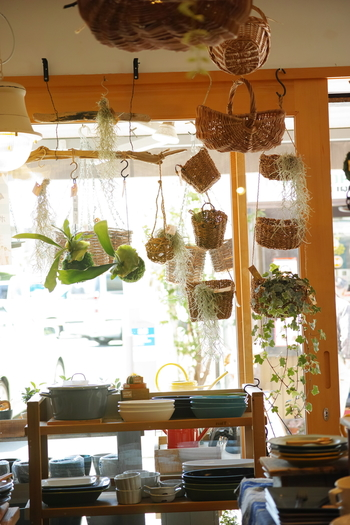 店内のいたるところにグリーンのアイテムや吊るし型のマクラメがあり、お部屋にグリーンがあることでこんなにも心が安らぐんだなということを教えてくれます。グリーンの飾り方も勉強になりますよ。