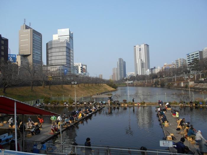 都会のど真ん中にある本格的な釣り堀りは、ドラマのロケ地にも使われ、東京の釣り好きの間では有名なスポットです。 新宿・JR市ヶ谷駅から近く、気軽に行きやすいのも人気の理由。 どこか懐かしく感じる釣り堀りで、ぼんやり、ゆったりするのも特別な気分になれそう。 併設されているショップでは、金魚や川魚、熱帯魚、水草などを入場料なく鑑賞することもできます。